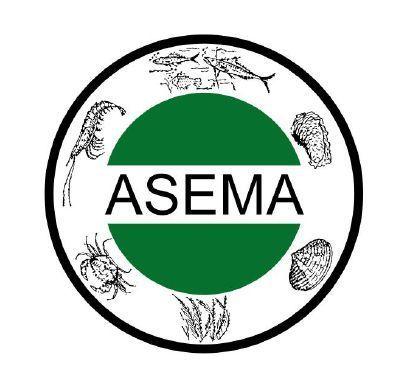 logo-asema-2